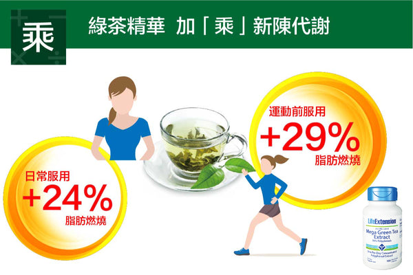 mechanism-of-green-tea-on-slimming