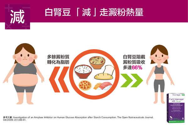 mechanism-of-white-kidney-bean-on-slimming