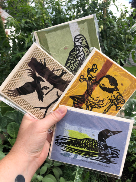 Card Pack: Birds (4 Pack)
