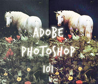 adobe photoshop 101