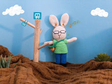 Load image into Gallery viewer, Barry Rabbit Toy Plushy