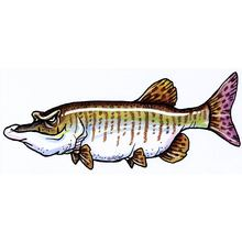 Spinecrusher (Muskellunge) Decal