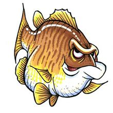 Topo (Smallmouth Bass) Decal