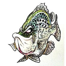 Speckles (Crappie) Decal