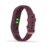 Garmin, vivosmart 4 (Rose Gold with Berry Band)