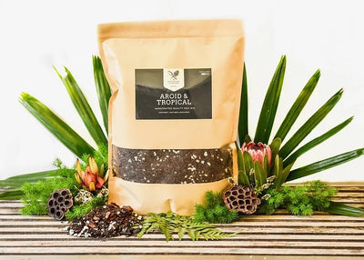 AROID & TROPICAL MIX 1.5KG - Gro Urban Oasis