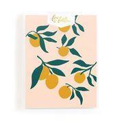 Muse Lemons Cards Boxed Set - Gro Urban Oasis