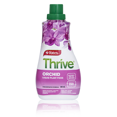 Yates Thrive Orchid 500ml concentrate - Gro Urban Oasis