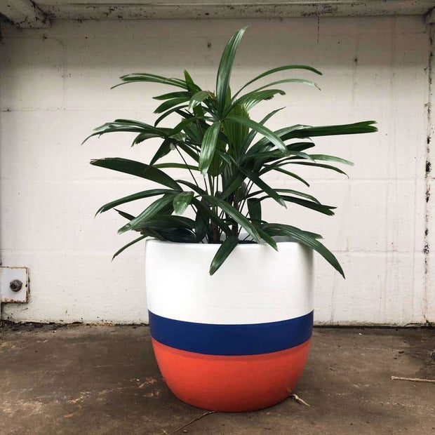 Daily Pot - Gro Urban Oasis