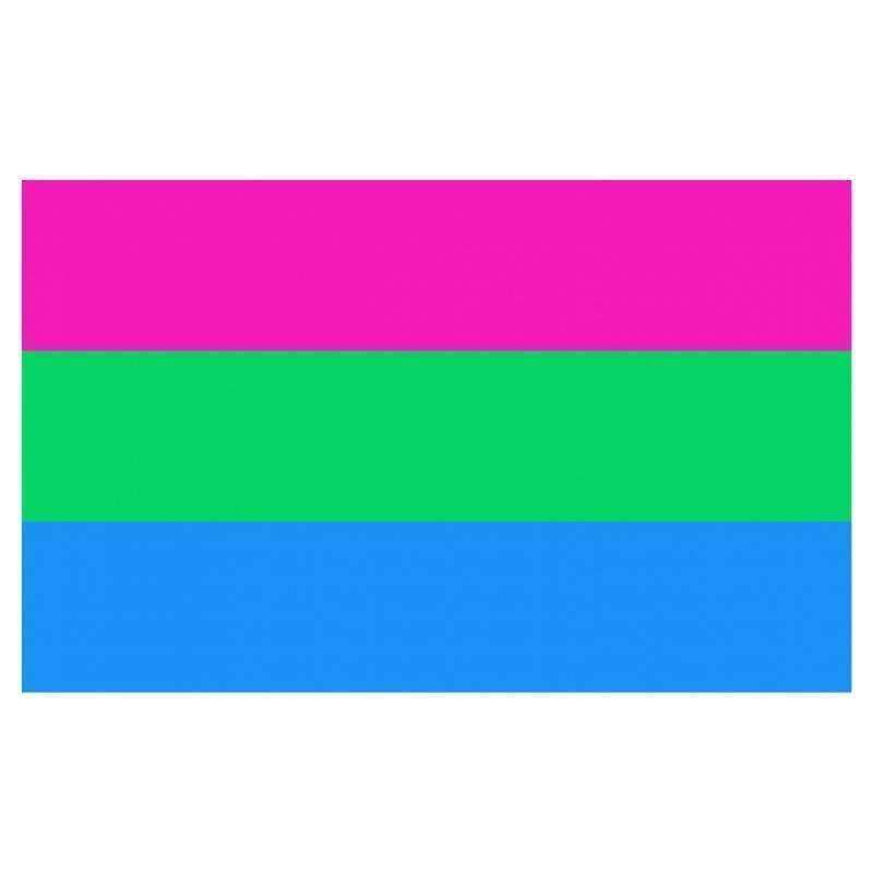 The Discriminant, Polysexual Pride Flag, gender neutral clothing and accessories