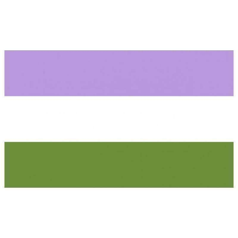The Discriminant, Genderqueer Pride Flag, gender neutral clothing and accessories