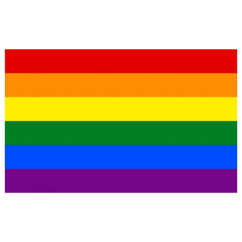 The Discriminant, LGBT+ (Gay) Pride Flag, gender neutral clothing and accessories
