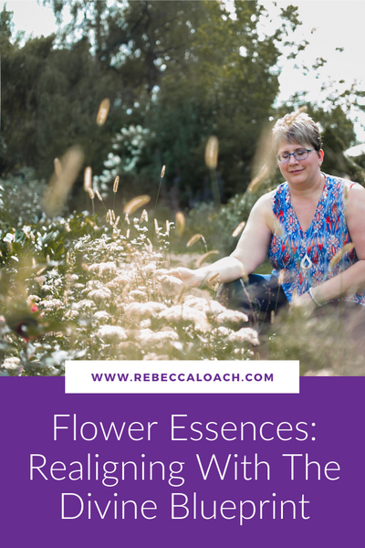Flower Essences: Realigning With The Divine Blueprint