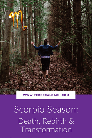 The overarching theme of Scorpio Season is transformation. The Scorpion seeks truth, penetrating through the depths of the emotional realm to excavate the gold that lies beneath. ⁣Read on for self-reflective questions and essential oil recommendations for all signs to support your personal healing and transformation.