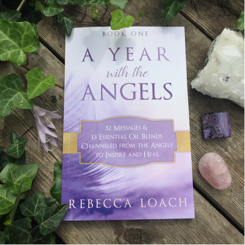 A Year with the Angels: Book One