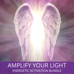 Amplify Your Light Bundle