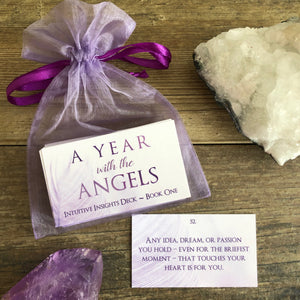 Intuitive Insights Deck: A Year with the Angels, Book One