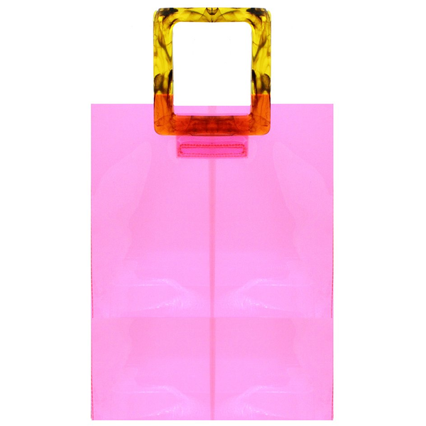 Lizzo Bag 8 other reasons Revolve Nordstrom  Neon Pink Clear Bag