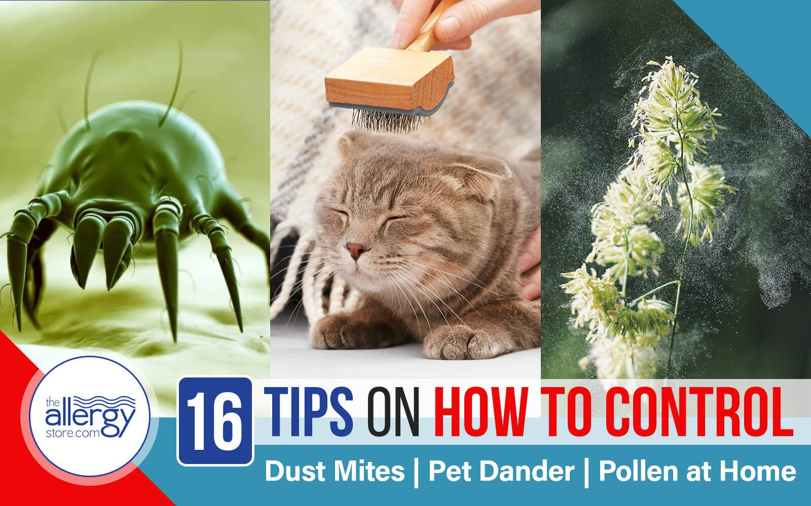 16 Tips on How to Control Dust Mites, Pet Dander, Pollen at Home