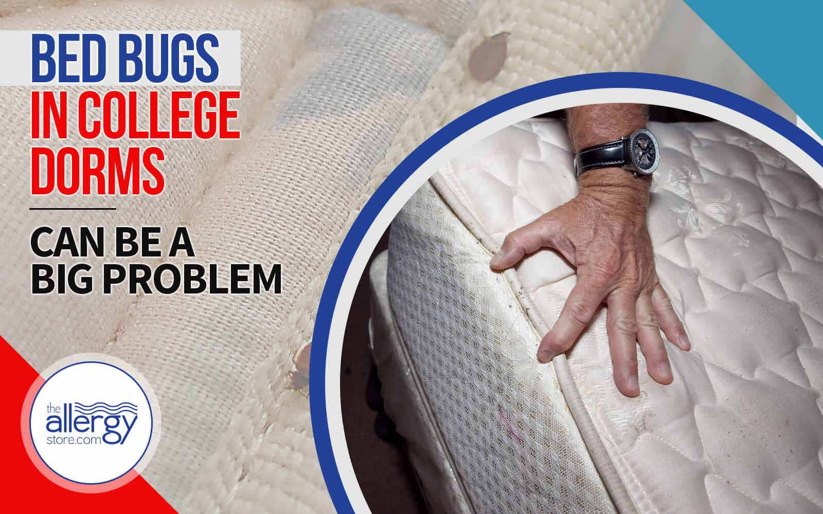 Bed Bugs in College Dorms Can Be a Big Problem