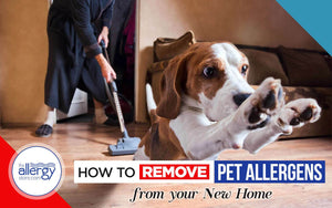 How to Remove Pet Allergens from your New Home