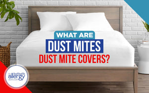What are Dust Mites and Dust Mite Covers?