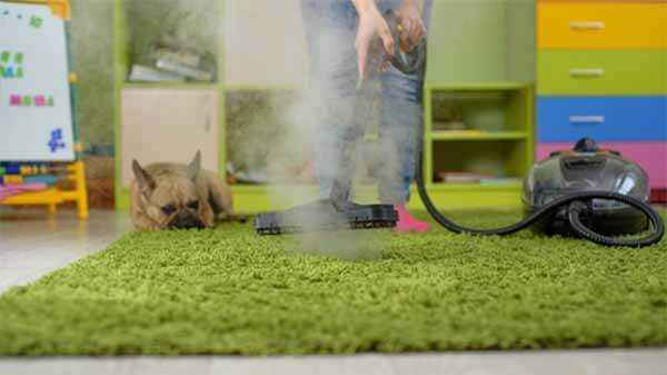 How do you prevent and get rid dust mites in your home?