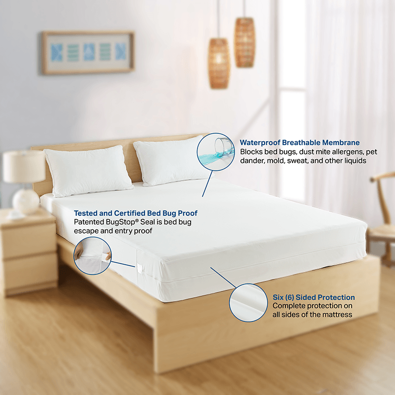 Benefits of Bed Bug Mattress Cover