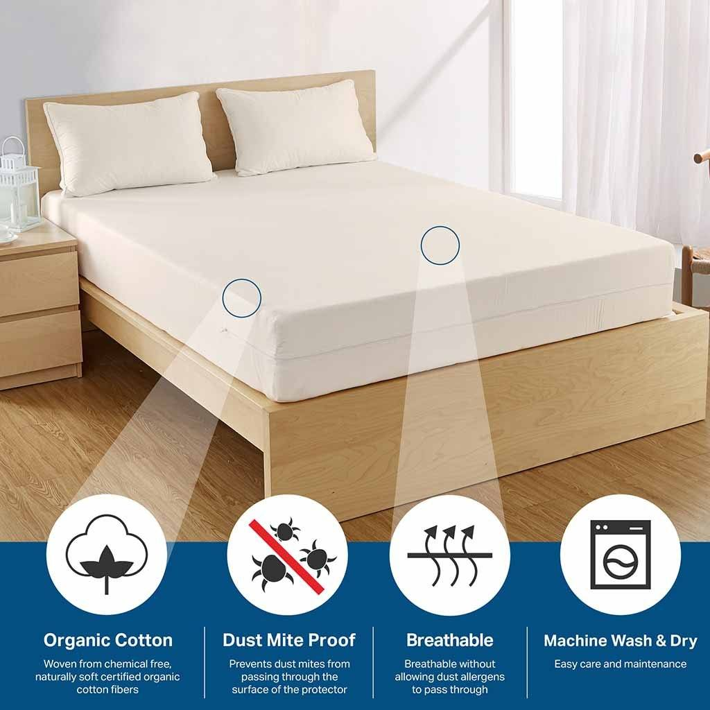 Organic Cotton Mattress covers - protects against dust mites, are breathable and natural.
