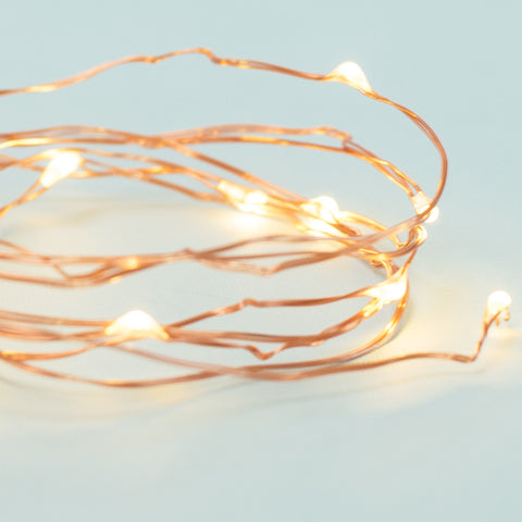 Cat String Lights