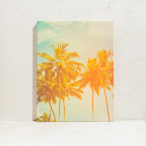 Palm Tree Wall Canvas