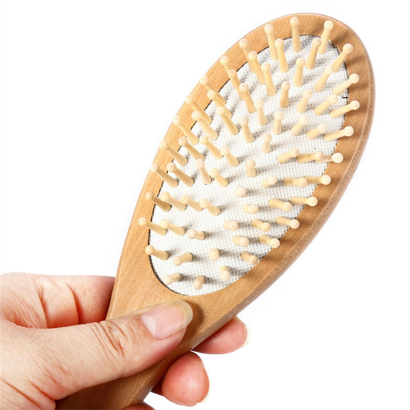 Ayurvedic Massaging Hairbrush