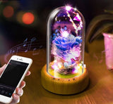LED Rose Lamp with Bluetooth Speaker