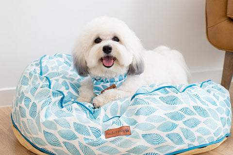 Pawfect Pals Dog Bed Koalified Cuddler