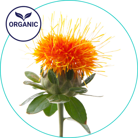 safflower oil organic tubbubble ingredient