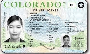 Führerschein (USA) Driver License