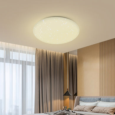 24W Smart LED Ceiling Light