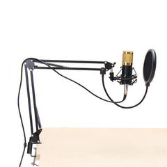 Condenser Microphone Dynamic System Kit