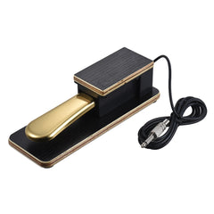 Electric Piano Keyboard Sustain Pedal