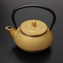 Load image into Gallery viewer, Cast Iron Kettle Japanese Style Teapot