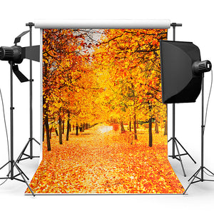 Vinyl Autumn Fall Photography Background