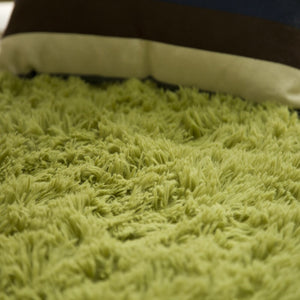 Soft Shaggy Carpet
