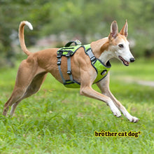 Load image into Gallery viewer, Dog Harness Training Vest