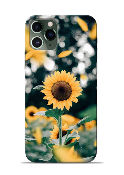 Sun Flower iPhone 11 Pro Mobile Back Cover