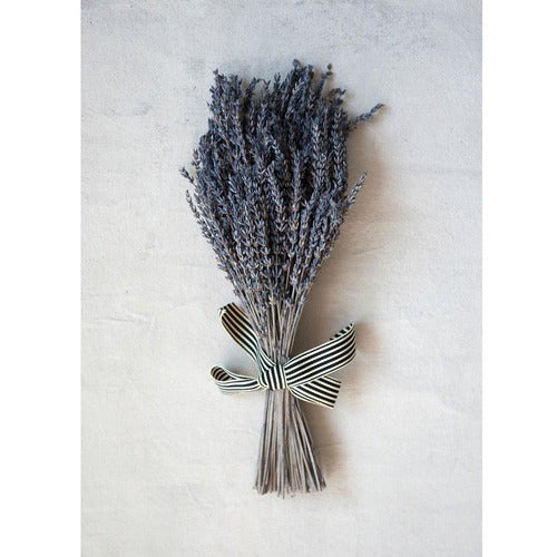 Dried Natural Lavender Bunch w/ Striped Ribbon