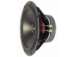 Visaton TIW 300, 8 Ohm, 12 Inch - High End HiFi Woofer