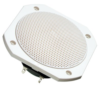 Visaton FRS 10 WP, 4Ohm, White, Waterproof, 4ins, Full Range Loudspeaker - Price Per Speaker