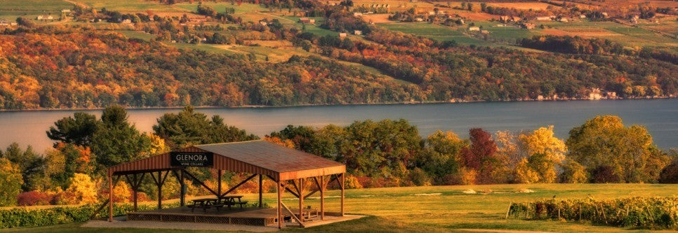finger lakes, NY, is the #2 wine travel 🌅 destination!