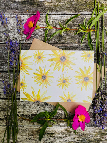 Plantable Flower Card - Rudbeckia Flowers
