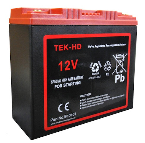 CRANKING Battery 12V-25AH TEK Red Top Proffessional Battery